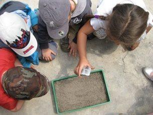 campamentos EDUCACION AMBIENTAL